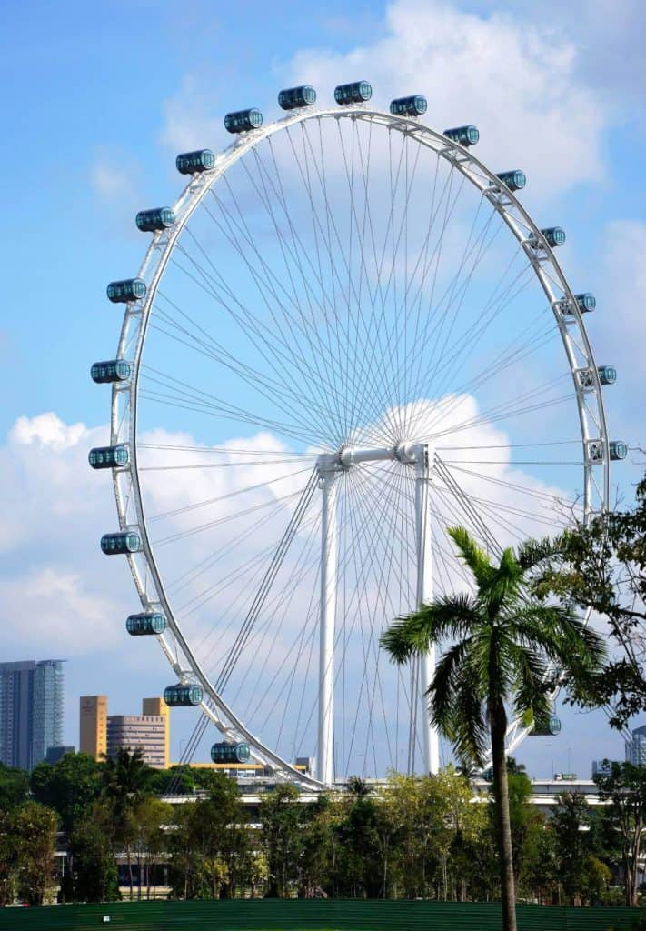 a big ferris wheel with palm trees in a city