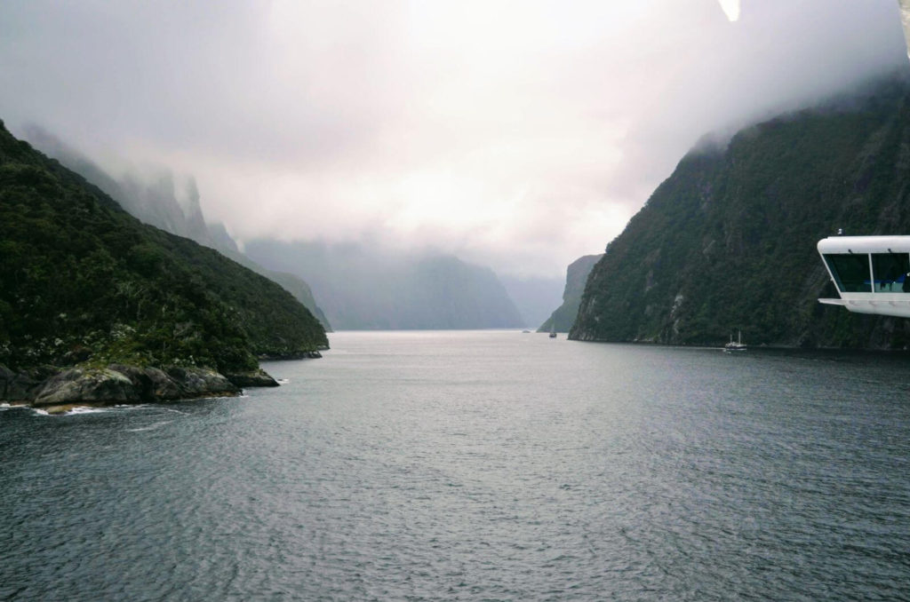 a ship entering a fiord with mountains on each side cruising the sounds new zealand