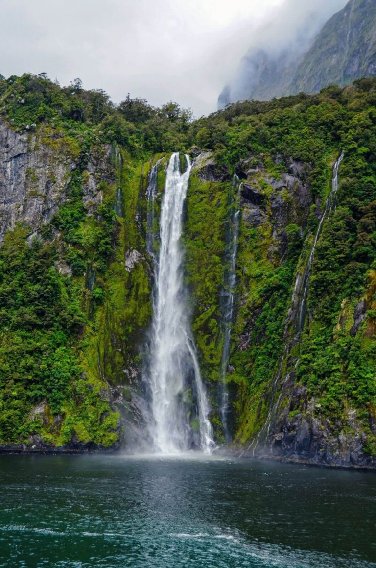 What Makes Cruising The Sounds New Zealand Spectacular