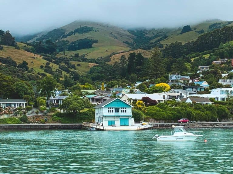 Akaroa Cruise Port – An Essential Guide with Top Things To Do