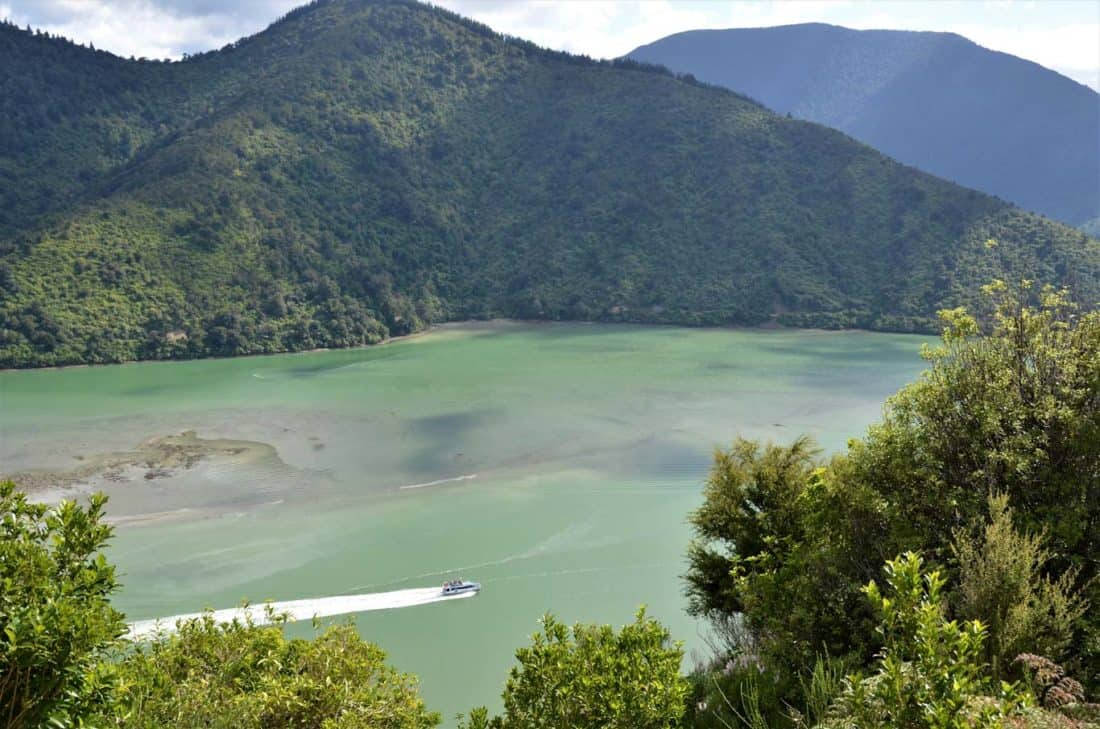 Cullen Point Look Out Marlborough Sounds