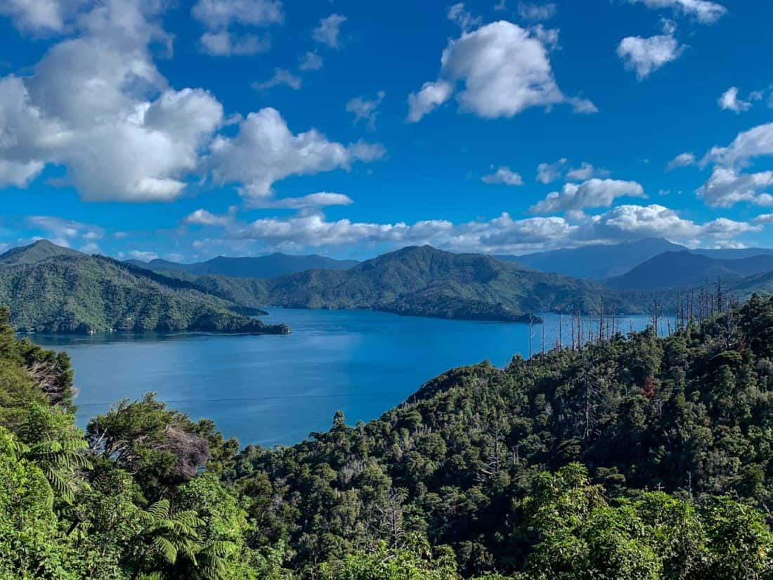 view from Queen Charlotte Drive Picton