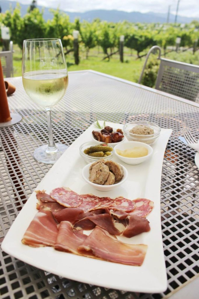 lunch with glass of white wine in a vineyard