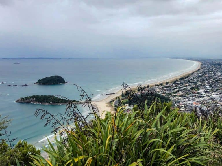 The Best 3 Day Trips From Tauranga