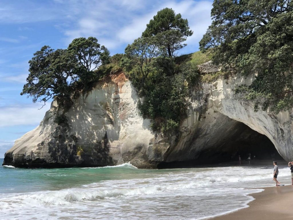 rocky cliffs with trees growing on the top on a beach