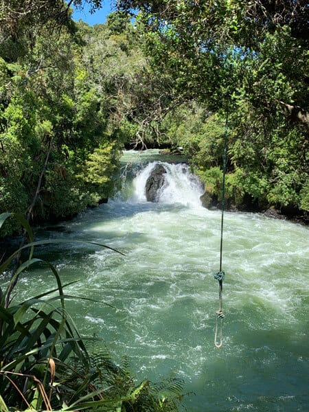 trout pool falls flowing into the river kaituna