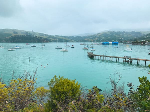 akaroa cruise harbour with sail boats and a long pier
