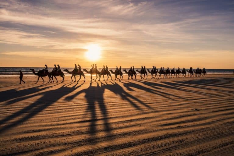 3 Camel Rides in Broome Western Australia – Our Memorable Experience