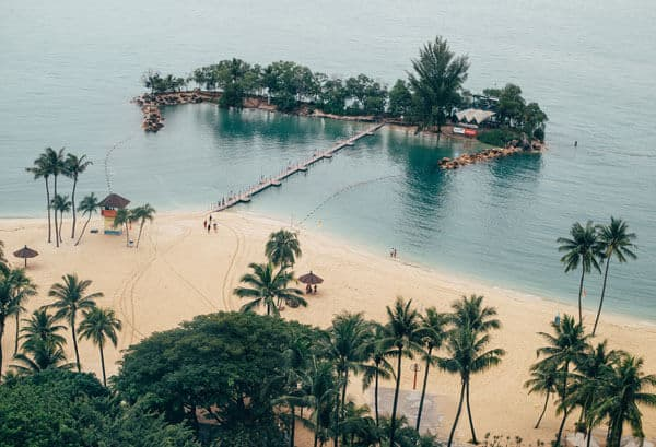 view of siloso beach with palm trees