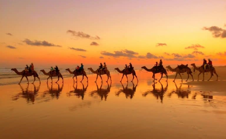 Top 20 Amazing Things To Do in Broome Plus Travel Guide