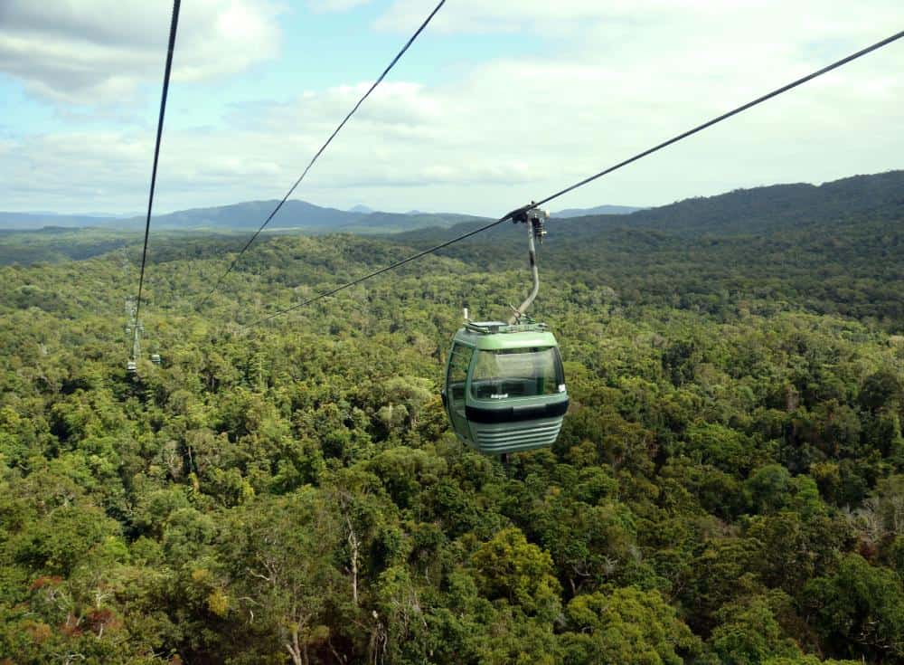 aerial view of a cable car up high above the rainforest