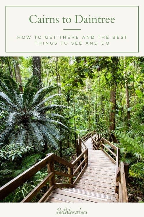 Cairns to Cape Tribulation & Daintree   Drive or Tour?