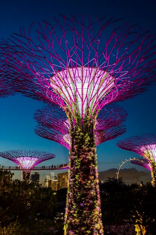 artificial trees lit up at night