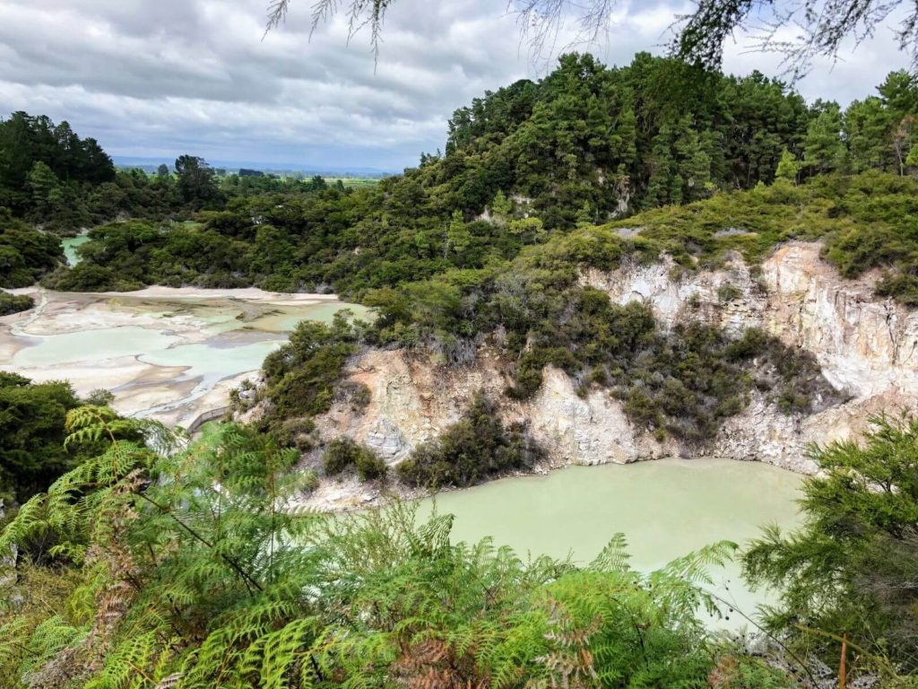 green pools with trees around them